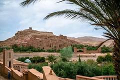 Hoy estamos visitando una de las ms conocidas Kasbahs: Ait Ben-Haddou, en Ouarzazate   Un lugar perfecto para perderse por sus rincones y descubrir bellos detalles arquitectnicos.  Y luego... camino a Marrakech, la 'Ciudad Roja'   www.marruecosentusman (marruecosentusmanos) Tags: calles colores paisajes desierto viajes disfrutar zocos ouarzazate pasear ciudad marruecos paraiso belleza kasbah cultura descubre oasis aventuras aitbenhaddou morocco