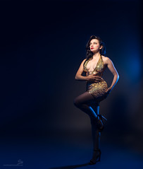 Sparkle (OwenLloyd) Tags: jg helendiaz studio sparkle sequins gold hardlight