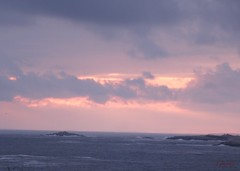 January 28 Sunset (photo fiddler) Tags: ocean pink sunset sky warm january atlantic shadbay nottobeusedwithoutmypermission