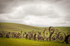 Wheels at Dahmen Barn (SUWEI2007) Tags: old rural vintage fence rust unique wheat wheels nopeople landmark growth fields environment feed agriculture washingtonstate rollinghills palouse monoculture cultivated nourish monocropping breadbasketofthenation dahmenbarn liveoftheland