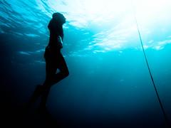 P1020619 (eputigna) Tags: ocean blue beach water mar fishing florida hunting palm atlantic freediving fl breathe pesca hold apnea spear spearfishing ocano speargun submarina subaquea