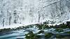 Izvor Plive (Bojan Janjic) Tags: winter green art nature water landscape 1 waterfall nikon filter pro tamron zima priroda voda cpl hoya bojan lightroom d90 izvor pejsaz vodopad pejzaz 1750mm janjic pliva