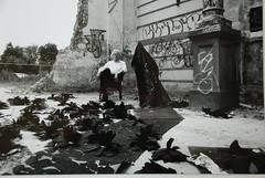 "Jan Mensinga, ""Les fleurs du mal"", ""The Flowers of Evil"" (billha zussman) Tags: lesfleursdumal mensinga zussman litholithographybillha baudelairejan"
