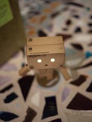The Eyes Glow! (greenplasticamy) Tags: japan toy lumix japanese robot amazon box mini panasonic cardboard micro 20mm figurine danbo f17 amazoncojp gf1 mft revoltech danboard micro43 minidanboard minidanbo dmcgf1