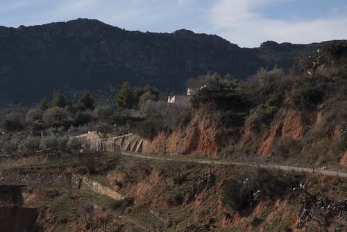 Elche de la Sierra