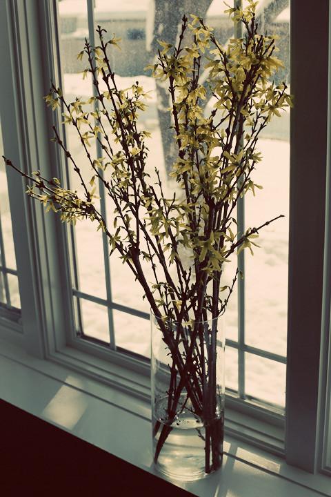 flowersinsnow-0211
