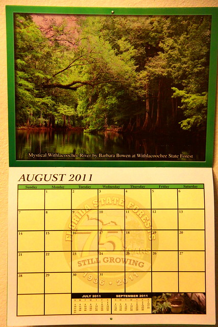 Calendar Mystical Withlacoochee River