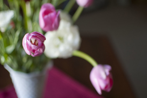 tulips, lisianthus