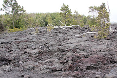 Volcano National Park_13 (Woobstr112g) Tags: park cruise volcano lava golden losangeles ship princess tubes maui class national kauai hawaiian honolulu hilo feb sailaway sanpedro goldenprincess 2011 hawaiiancruise minisuite grandclassship sanpedrosailaway acminisuite grandclassgrand