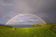 (Rawlways) Tags: ocean storm green rain landscape rainbow cattle pastures