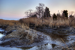 Jersey Marsh (Chase Schiefer) Tags: sunset sea nature outdoors photography salt marsh hdr highdynamicrange nikond90 saltmarshcordgrass chaseschieferphotography seabreezenewjersey seabreezenj saltmarshnewjersey
