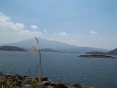 100_0288 (travellersai) Tags: kerala treehouse wayanad teaestate wildboar bandipur chital vythri banasuradam soojiparafalls streamvalleyresorts