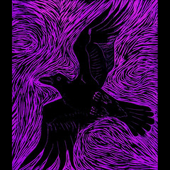Created by Benjamin Billingsley from Wilmington, NC,I am fascinated by the image of the crow in Native American stories from the Pacific Northwest (The Dream Rocket Project) Tags: christmas family school trees people mountain newyork green art home water nova animal glitter kids trash stars religious washington community war paint peace kentucky space flag unitedstatesofamerica group cancer conservation diversity astronaut felt save aliens nasa clean explore health environment leader twintowers express olympic agriculture racism elementary planting abuse humans equality global facebook discover intolerance saturnvrocket presidentobama internationalfibercollaborative thedreamrocket