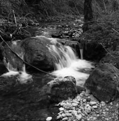 Le Nozon (Tonton Dave) Tags: nature monochrome river landscape switzerland suisse rivière paysage vaud croy nozon pompaple