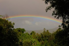 true full rainbow (telson_) Tags: martinique carribean creole telson