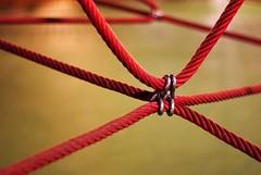 Knot  57-365 #2 (Samyra Serin) Tags: france playground 50mm europe pentax spiderweb gimp potd year2 365 connection day57 1600iso valdemarne aphotoaday alfortville 2011 project365 twtme dailyshoot project36557 samyras pentaxasmc50mmf17 k200d shuttercal ds468 samyraserin samyra008