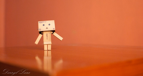 danbo - studio high res (2 of 6)