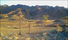 C360_2011-02-23 17-26-48 (MagicPAD - الكعبي) Tags: uae الإمارات الجزيرة الظاهر ناصر الكعبي الخطوة مصح محضة