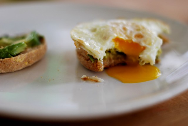 Egg & Avacado