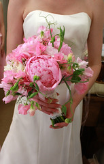 Los Gatos Bridal Flowers, Bouquet of Pink Peonies (Signature Bloom) Tags: pictures pink flowers wedding decorations flower floral garden for bride design spring outdoor designer images romantic florist casual vendor siliconvalley bouquet weddings bridal decor peninsula southbay ideas peonies weddingflowers bouquets weddingphotos freesias floraldesign sweetpeas sanjoseca losgatosca florists bridalbouquet bridalflowers saratogaca pinkwedding floraldesigner 95121 radonichranch 95033 weddingflorist flowersforwedding sanjoseflorist sanjoseweddingflowers signaturebloom losgatosflowers saratogacaweddingflorist saratogacaflowers wwwsignaturebloomcom sanjoseweddingflorist losgatoscaweddingflorist saratogacaweddingflowers losgatoscaweddingflowers bridalflorist weddingfloristsanjose