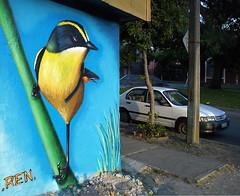 Siete colores. (www.ren1.cl) Tags: graffiti colores concepcin ren siete pajarito 2011 concegraff