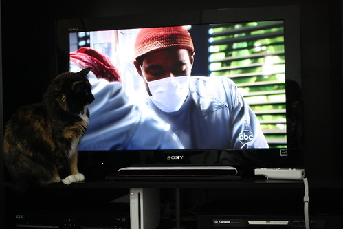 Caprica loves medical dramas
