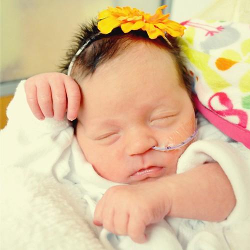 Avery Linette, 1 week