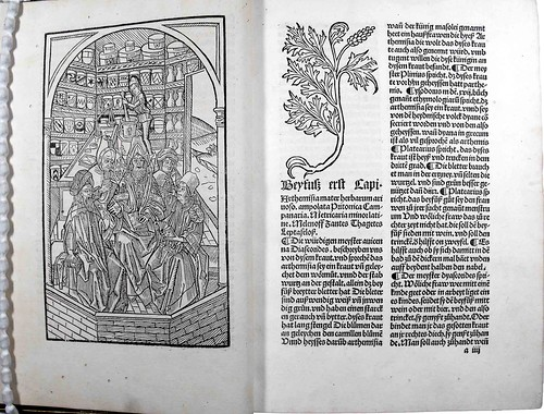 Woodcut illustrations from Gart der Gesundheit