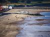 (turgidson) Tags: ireland sea irish moon beach studio four lumix coast raw zoom g tide low super panasonic telephoto developer micro pro g1 lowtide wicklow lunar tidal bray dmc mega thirds converter irishsea ois vario m43 silkypix perigee f4056 41412 microfourthirds supermoon 45200mm panasoniclumixdmcg1 panasonicg1 lunarperigee vario45200mm panasoniclumixgvario45200mmf4056megaois hfs045200 silkypixdeveloperstudiopro41412 p1170903