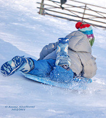 3             Snow Sledding3 (Assma Alsalloomi) Tags: snow kids sledding