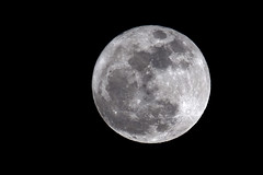 Lunaza del 19 de marzo de 2011 (wicho) Tags: moon luna supermoon superluna