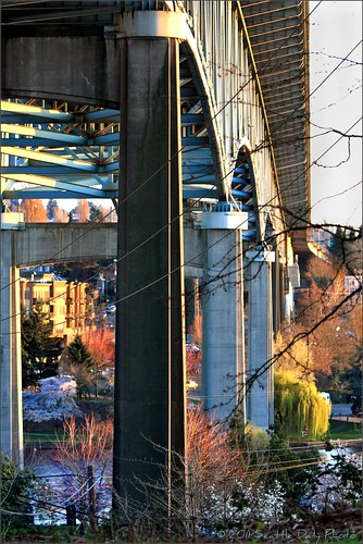 Sunday Bridges #20:  Washington Ship Canal Bridge