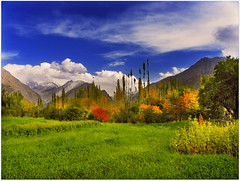 Hunza ,PAKISTAN (TARIQ HAMEED SULEMANI) Tags: autumn pakistan mountains tourism nature colors trekking hiking north peaks hunza tariq kareemabad concordians hushay sulrmani