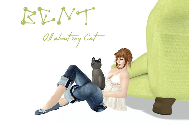 BENT! all about my cat 1