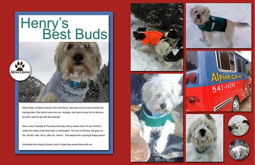 Henry's Best Buds - 2-Page LayOut