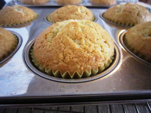 cooling cupcakes, take seven