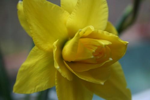 3rd April 2011