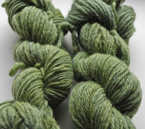 Black Beans as a Natural Dye on Wool