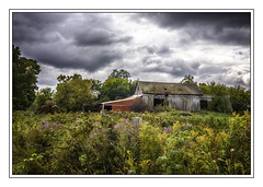 Barn and flowers (jsleighton) Tags: barn fall farm field flowers sky landscape