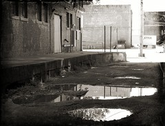 Back Alley (Jayne Reed) Tags: urban buildings brick water reflections monochrome