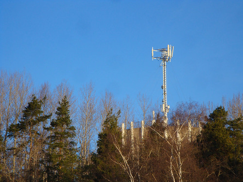 A cell phone tower in sunlight