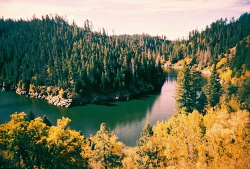 [フリー画像] 自然・風景, 森林, 川・河川, アメリカ合衆国, 201109192300