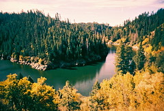Blue Ridge Reservoir on film (kevin dooley) Tags: pink blue autumn arizona sky lake southwest color tree green fall film water analog 35mm season lens gold us leaf lomo xpro lomography crossprocessed xprocess colorful slim purple cross angle central wide az reservoir plastic ridge process rim cheap vivitar tone extra autumnal blueridge uws oldfashioned changed ws 22mm mogollon mogollanrim blueridgereservoir vivitarextrawideslim vivitarextrawideandslim wuws