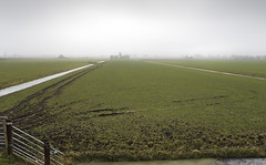 Flat & Empty (nokkie1) Tags: holland color water grass lines fence flat empty tracks farms polder beemster
