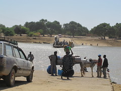 Ile a Morphil, Podor, Le Sngal, Westafrika, Afrika, West Afric (hn.) Tags: auto africa horses copyright horse car animal animals ferry river tiere heiconeumeyer carriage kutsche tags voiture westafrica afrika senegal fluss pferde pferd fhre horsecart tier fahrzeug westafrika ferryboat fleuve afrique sahel horsedrawncarriage copyrighted wagen carferry pferdekutsche pferdekarren caleche autofhre afriquedelouest podor sahelzone lafriquedelouest septplace regiondesaintlouis ileamorphil morphil morphilisland 7place
