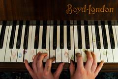 Identity (evilibby) Tags: musician music girl keys hands keyboard hand finger fingers piano fingerprints identity human libby 365 pianist pianokeys 365days explored 3653 boydlondon soulpancake projectsoulpancake explored3653
