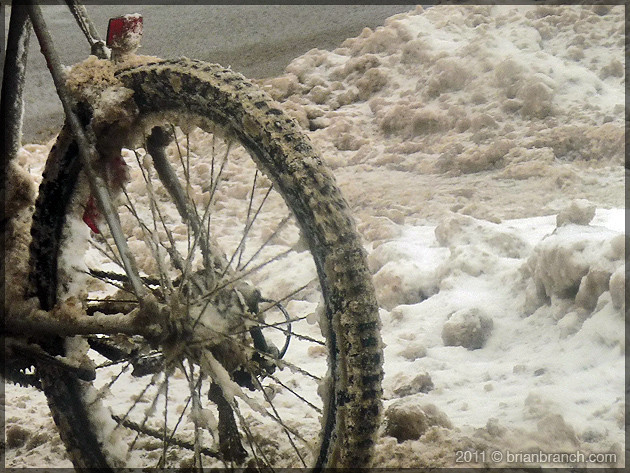 P1130728_bike