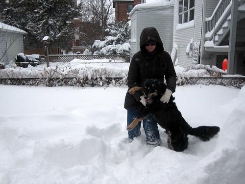 blizzard 089
