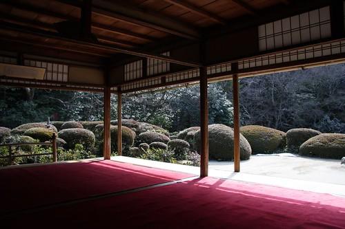 日本の庭園 / A Japanese garden