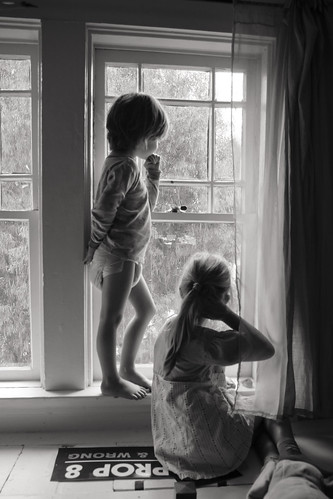 windowwatchers